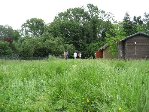 chilworth lawn